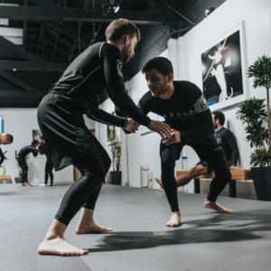Les arts martiaux appliqués à l'entreprise